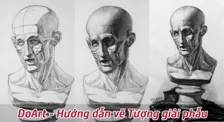 doart-huong-dan-ve-tuong-giai-phau
