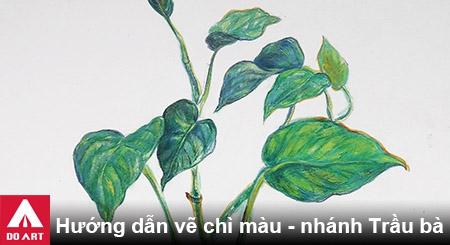 huong-dan-ve-chi-mau-nhanh-trau-ba-doart